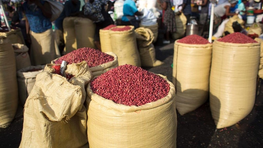 In this April 12, 2016 photo, sacs full of peanuts are displayed for sale in the Croix-des-Bossales market in Port-au-Prince, Haiti. Subsistence farmers in Haiti and economic development experts say they are dismayed by a planned influx of American-grown peanuts from a U.S. agricultural surplus that they fear could undercut a vital cash crop in the impoverished Caribbean nation. (AP Photo/Dieu Nalio Chery)