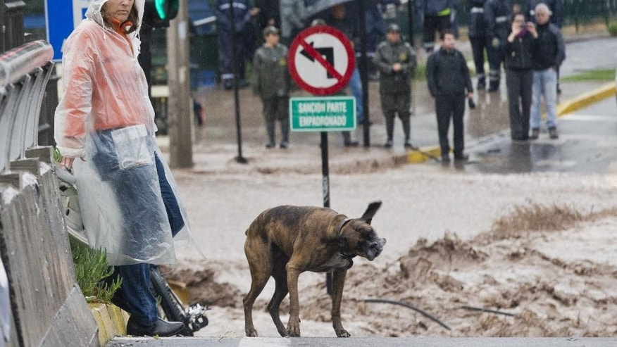 A woma and her dog stand near a flooded street in Santiago, Chile, Sunday, April 17, 2016. Authorities say the Rio Mapocho flooded several districts of the city and landslides killed at least one person. (AP Photo/Esteban Felix)