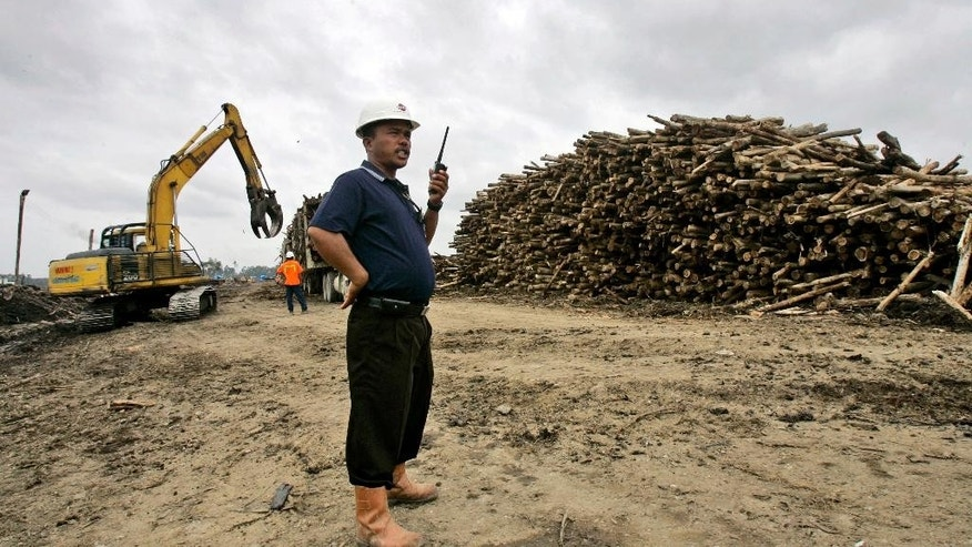 FILE - In this Nov. 4, 2007 file photo, a worker talks on his radio near a pile of acacia logs at a pulp and paper mills in Pangkalan Kerinci, Riau province, on Sumatra island, Indonesia. A landmark commitment by one of the world's largest producers of tissue and paper to stop cutting down Indonesia's prized tropical forests is under renewed scrutiny as the company prepares to open a giant pulp mill in South Sumatra. (AP Photo/Dita Alangkara, File)