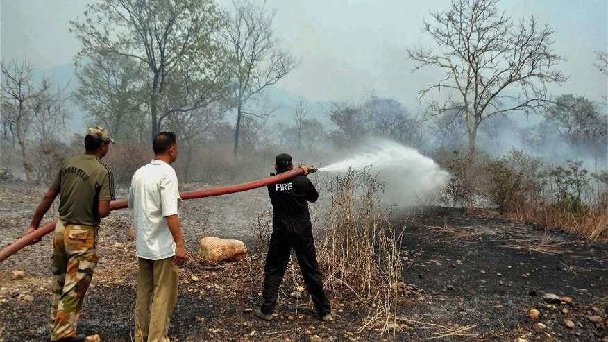 Indian fire fighters try to extinguish forest fire at the Maldevta area in Dehradun, India, Monday, May 2, 2016. Massive wildfires that have killed at least seven people in recent weeks were burning through pine forests in the mountains of northern India on Monday, including parts of two tiger reserves.(Press Trust of India via AP) INDIA OUT, MANDATORY CREDIT, NO ARCHIVE