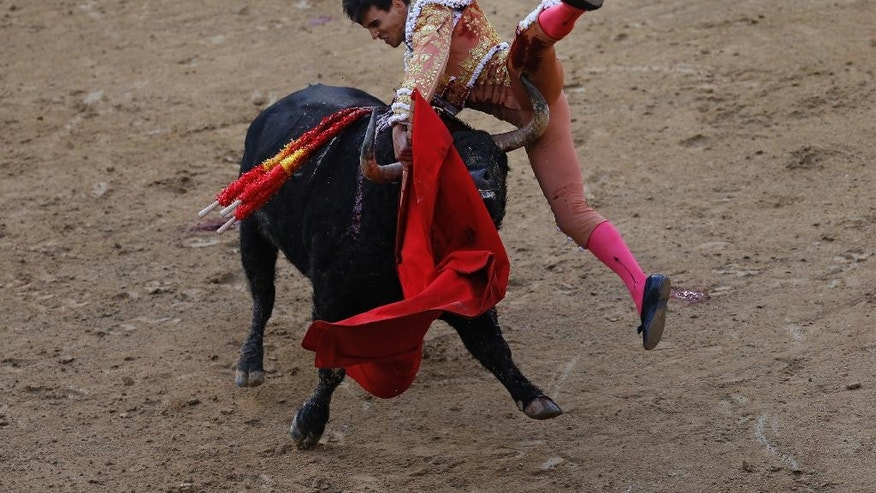 In this photo taken on Thursday, May 12, 2016, Spanish bullfighter Gonzalo Caballero is gored in his left thigh by an El Ventorillo's ranch fighting bull during a bullfighting at the Las Ventas bullring in Madrid, Spain. As matadors face half-ton bulls this month during Madrid's most important annual series of bullfights and Pamplona gears up for its chaotic July bull runs, tensions are building between anti-bullfighting forces and the traditions' defenders. (AP Photo/Francisco Seco)