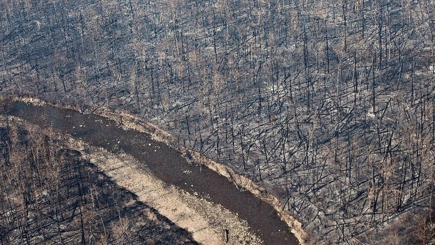 This aerial photo shows out trees in Fort McMurray, Alberta, Canada, on Friday, May 13, 2016.  Prime Minister Justin Trudeau landed in Fort McMurray on Friday and boarded a military helicopter to assess the damage caused by a raging wildfire that forced the evacuation of more than 88,000 people in the country's oil sands capital. (Jason Franson/The Canadian Press via AP) MANDATORY CREDIT