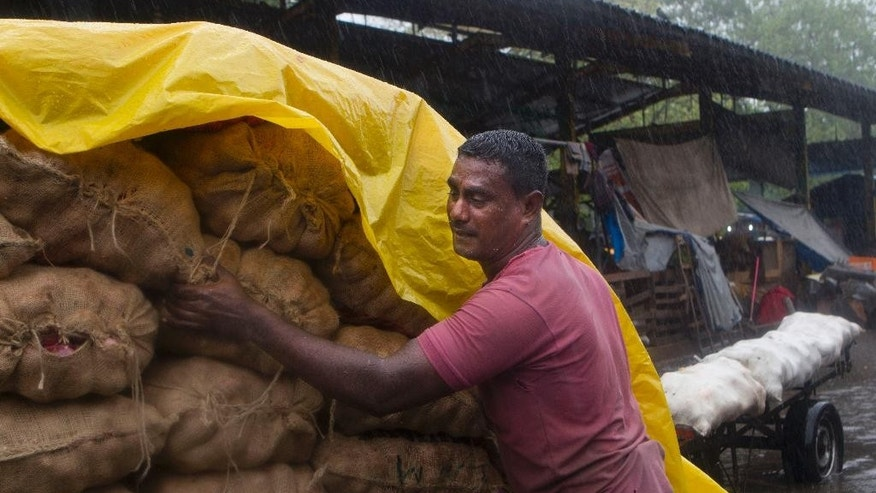 A Sri Lankan laborer protects sacks of potatoes and onions from heavy rains in Colombo, Sri Lanka, Monday, May 16, 2016. Flash floods caused by heavy rains have displaced hundreds of families in several parts of Sri Lanka as the Indian Ocean Island is experiencing extreme weather conditions over the last two days. (AP Photo/Eranga Jayawardena)