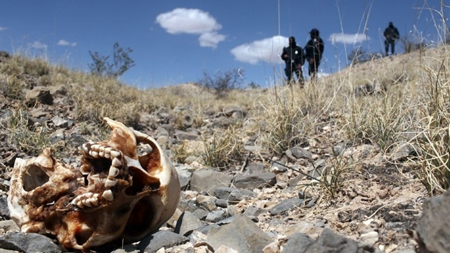 JUAREZ, MEXICO - MARCH 19:  Mexican police stand near a skull discovered with other remains in what is thought to be a large grave in the desert of victims of recent drug violence on March 19, 2010 in the county ofJuarez, Mexico. The border city of Juarez has been racked by violent drug related crime recently and has quickly become one of the most dangerous cities in the world to live. As drug cartels have been fighting over ever lucrative drug corridors along the United States border, the murder rate in Juarez has risen to 173 slayings for every 100,000 residents. President Felipe Calderon?s strategy of sending 7000 troops to Juarez has not mitigated the situation. With a population of 1.3 million, 2,600 died in drug-related violence last year and 500 so far this year, including two Americans who worked for the U.S. Consulate last weekend as they returned from a children?s party.  (Photo by Spencer Platt/Getty Images)