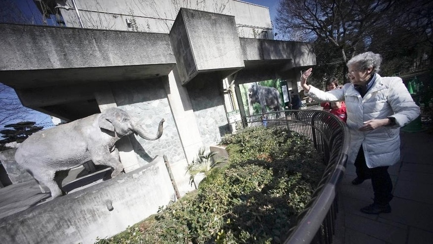 "FILE - In this Jan. 27, 2016 file photo, Marian Hara, right, dances and gestures until Hanako the elephant raises her trunk and comes close to the edge of its pen at Inokashira Park Zoo on the outskirts of Tokyo. The elderly elephant that set off a petition drive to move her out of her concrete pen in a small zoo in Japan died Thursday, May 26 at age 69. Hanako, or ""flower child,"" was a gift from the Thai government in 1949 and lived in Inokashira Park Zoo in Tokyo since she was 2. She was Japan's oldest elephant and had a long life for captive Asian elephants. (AP Photo/Eugene Hoshiko, File)"