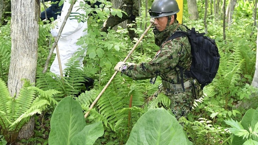 Police officers, rear, and members of the Ground Self-Defense Force conduct a search operation for Yamato Tanooka, a seven-year-old boy who has been missing since May 28, in a forest at Nanae town, in Japan's northernmost main island of Hokkaido Thursday, June 2, 2016. The search for the boy who disappeared after his parents left him behind in the Japanese forest as punishment pushed into a sixth day on Thursday, but with no clues to his fate. (Daisuke Suzuki/Kyodo News via AP) JAPAN OUT, CREIT MANDATORY
