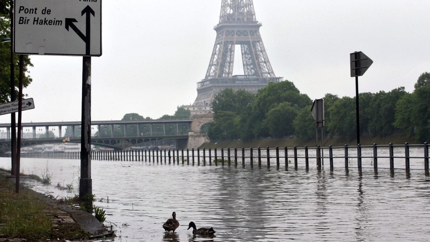 June 1, 2016: Ducks swim on the overflowing embankments of Paris.