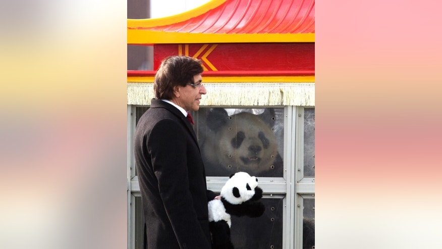 FILE - In this Feb. 23, 2014 file photo, Belgium's Prime Minister Elio di Rupo holds a stuffed panda as he welcomes Chinese panda Hao Hao after its arrival at Zaventem airport in Brussels. Belgian animal park Pairi Daiza announced on Thursday, June 2, 2016 that Hao Hao gave birth to a baby. (AP Photo/Virginia Mayo, File)