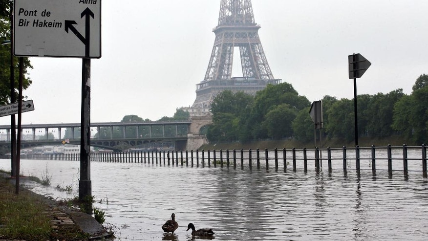 Ducks swim on the overflowing embankments of Paris, Wednesday, June 1, 2016. Paris City Hall closed roads along the shore of the Seine from the southwest edge of the city to the neighborhood around the Eiffel Tower as the water level has risen 4.3 meters (14 feet 1 inches) higher than usual. (AP Photo/Thibault Camus)