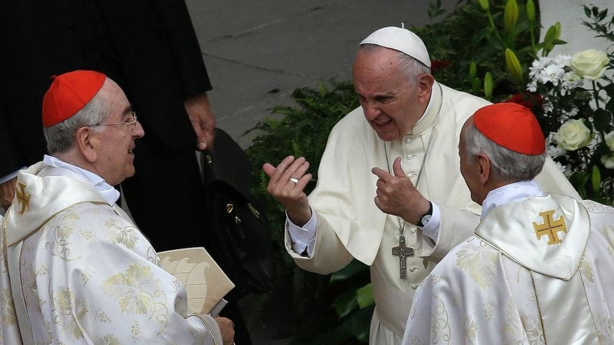 Pope Francis  meets with cardinals at the end of a Jubilee mass for priests in St. Peter's Square at the Vatican, Friday, June 3, 2016. (AP Photo/Alessandra Tarantino)