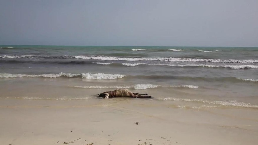 The lifeless body of a migrant lays on the beach near the western city of Zwara, Libya, Thursday June 2, 2016, as rescue workers begin to retrieve some of the more than 100 bodies pulled from the sea, after a smuggling boat carrying mainly African migrants sank into the Mediterranean.  Libya's navy spokesman Col. Ayoub Gassim says, Friday June 3, that the bodies of more than 100 migrants have been retrieved, but the death toll is likely to be higher. (APTV via AP) TV OUT