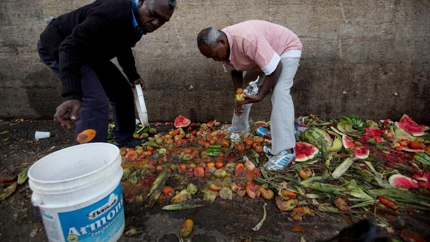In this May 31, 2016 photo, Pedro Hernandez, left, and his friend Luis Daza, pick up tomatoes from the trash area of the Coche public market in Caracas, Venezuela. At Coche, even once middle class Venezuelans made desperate by the country's economic collapse have taken to sifting through the trash to resell or feed themselves on discarded fruits and vegetables. (AP Photo/Fernando Llano)