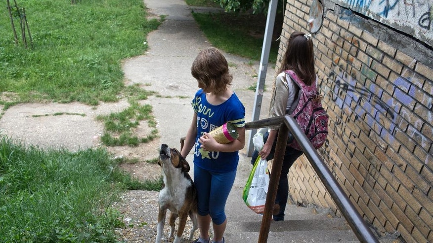 WITH STORY SERBIA FEEDING STRAYS : In this photo taken Friday, June 10, 2016, Tara Metikus, 10, center, a volunteer, pets a stray dog while Ana Kojic, 38, carries a bag of dog food in a suburb of Belgrade, Serbia.  There are too many hungry dogs and cats out there, so Kojic has made sure that whoever wants to help can do so. The animal rights activist from Belgrade Kojic has set up a network of volunteers who respond to calls from the public and collect food donations for the countless stray animals that roam the Serbian capital. (AP Photo/Marko Drobnjakovic)