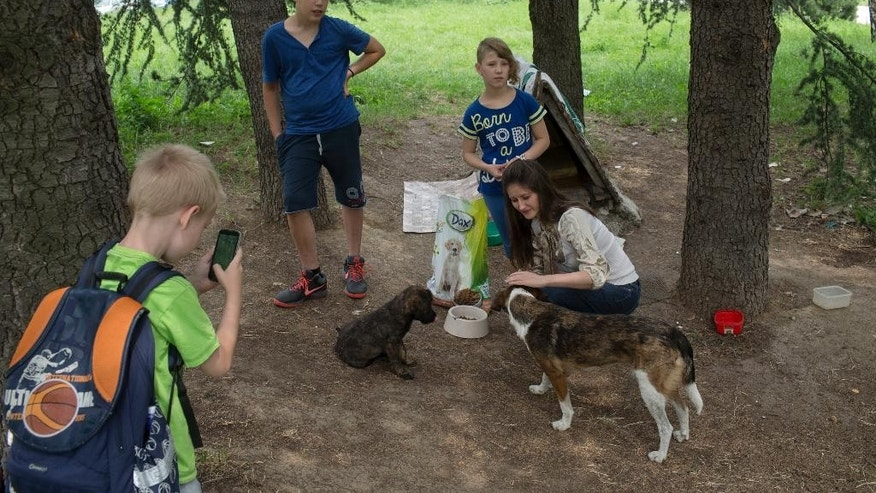 WITH STORY SERBIA FEEDING STRAYS : In this photo taken Friday, June 10, 2016, Ana Kojic, 38, right, and Tara Metikus, 10, 2nd right, feed stray dogs in a suburb of Belgrade, Serbia. There are too many hungry dogs and cats out there, so Kojic has made sure that whoever wants to help can do so. The animal rights activist from Belgrade Kojic has set up a network of volunteers who respond to calls from the public and collect food donations for the countless stray animals that roam the Serbian capital. (AP Photo/Marko Drobnjakovic)