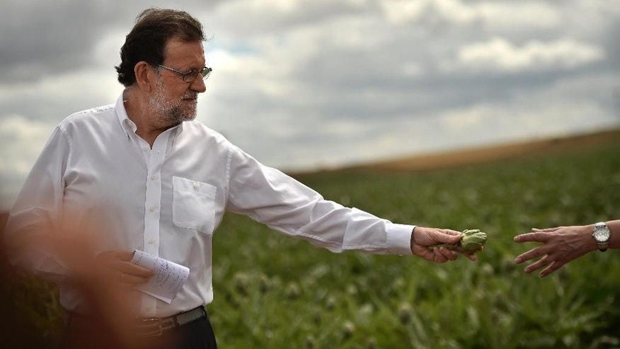 Spain's acting Primer Minister and candidate of Popular Party, Mariano Rajoy, holds up an artichokes during a campaign election rally in Tudela, northern Spain, Wednesday, June 15, 2016. Spain's political parties are set to launch two-week campaigns leading up to a June 26 election aimed at breaking six months of political paralysis after a December election failed to negotiate a governing coalition. (AP Photo/Alvaro Barrientos)