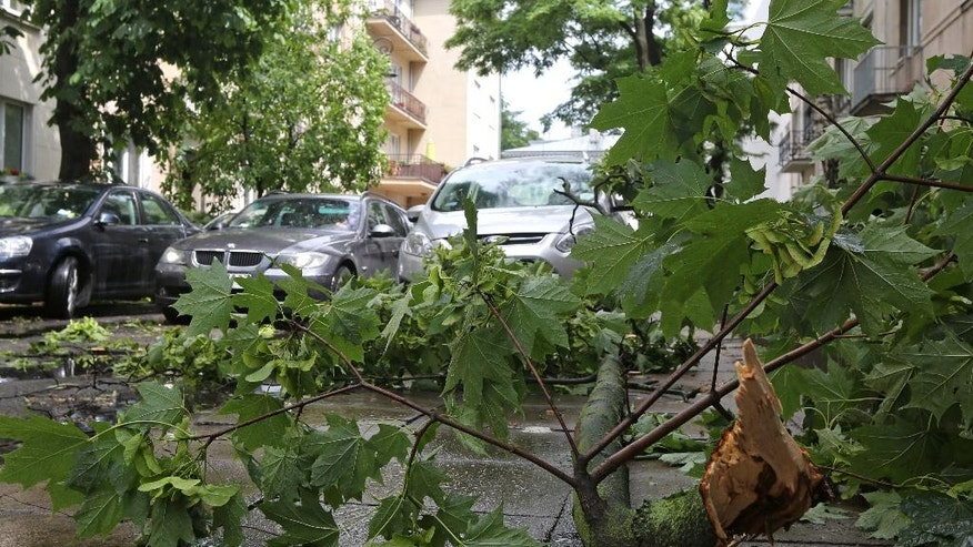 A car drives past a broken tree on a street in Warsaw, Poland, Friday, June 17, 2016, as a rainstorm hits the city. (AP Photo/Czarek Sokolowski)