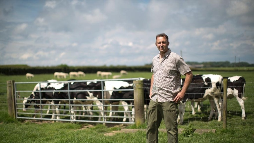In this photo taken Thursday, June 16, 2016, dairy farmer Robert Warnock, who plans to vote this week for Britain to leave the EU, poses for a photograph during an interview with The Associated Press on Capel Church Farm, in the village of Capel-le-Ferne, near Folkestone, south east England. (AP Photo/Matt Dunham)