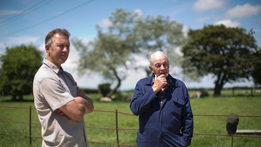 In this photo taken Thursday, June 16, 2016, dairy farmer Robert Warnock, left, who plans to vote this week for Britain to leave the EU, and his father Jim who favours remaining in the EU, stand together as they are interviewed by The Associated Press on Capel Church Farm, in the village of Capel-le-Ferne, near Folkestone, south east England. Many British farmers feel the same emotional tug. But while their hearts tell them to leave, their heads urge caution. The EU is helping farmers stay afloat at a time when many are struggling. (AP Photo/Matt Dunham)