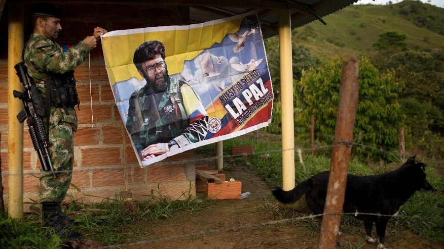 Orlando, a rebel fighter for the 36th Front of the Revolutionary Armed Forces of Colombia or FARC, hangs a banner featuring the late rebel leader Alfonso Cano in January.