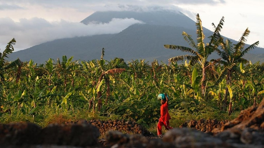 FILE-In this March 29, 2010 file photo, a resident walks past banana trees near the base of Mount Nyiragongo, one of Africa's most active volcanos, in Goma, Congo. Traumatized farmers are slowly returning to fields decimated by the 2002 eruption of Mount Nyiragongo in eastern Congo. Flowing lava flattened more than 30 percent of the city of Goma, 20 kilometers away. (AP Photo/Rebecca Blackwell,File)