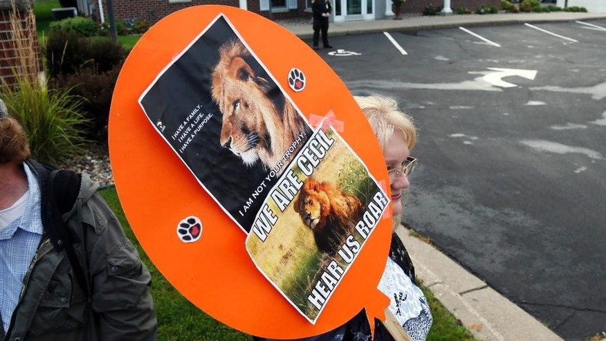 FILE - In this Sept. 2015 file photo, demonstrators gather outside the dental practice of Walter Palmer, identified as the hunter who killed Cecil the lionin Zimbabwe. A year ago Palmer killed the lion in what authorities said was an illegal hunt, infuriating people worldwide and invigorating an international campaign against trophy hunting in Africa. (AP Photo/Jim Mone-File)