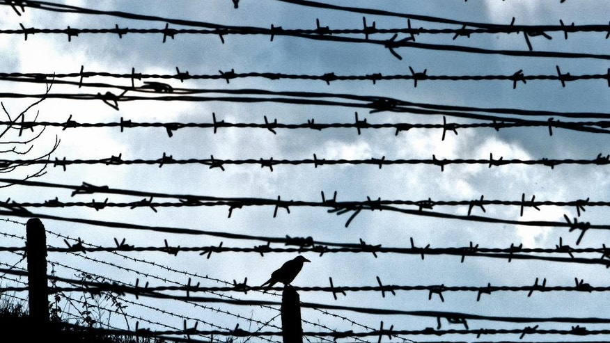 FILE - In this file photo taken Dec. 10, 2010, a bird sits on a pole behind barbed wire fences in Fort 13 of the Jilava jail where numerous political prisoners were held and executed, in Jilava, Romania. A government institute tasked with investigating communist crimes has called for two former prison chiefs to be probed on suspicion of causing the deaths of 204 political prisoners.(AP Photo/Vadim Ghirda, File)