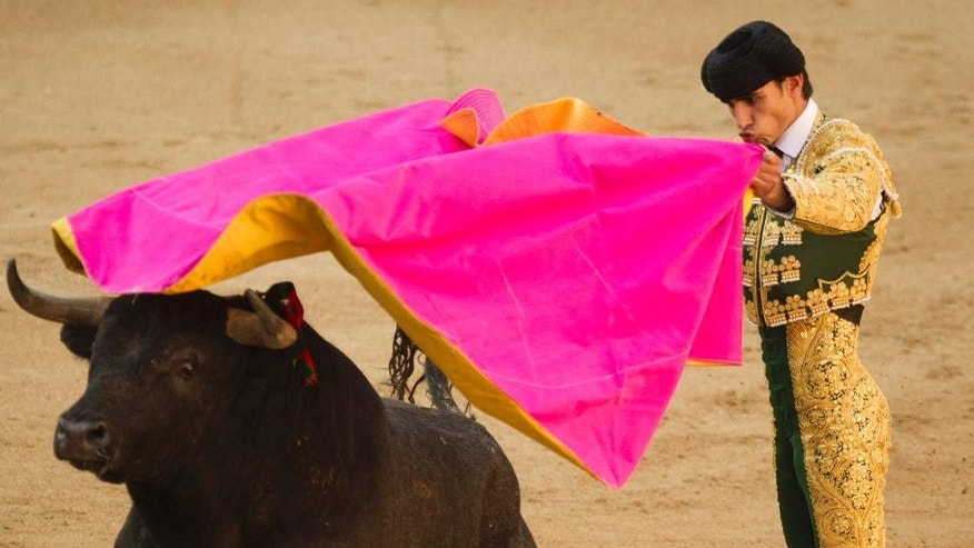 FILE - In this May 16, 2011 file photo, Spanish bullfighter Victor Barrio performs during a bullfight of the San Isidro's fair at the Las Ventas Bullring in Madrid.  The matador has been fatally gored in Spain during a bullfight in an eastern town — the first professional bullfighter to be killed in the ring in more than three decades.  The 29-year-old Barrio was pronounced dead late Saturday, July 9, 2016,  by a surgeon at the Teruel bullring. (AP Photo/Daniel Ochoa de Olza, File)