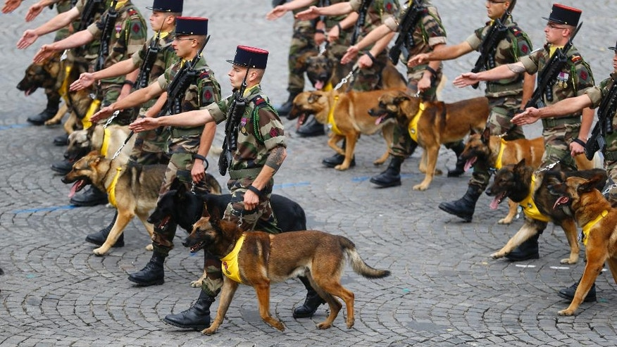 French dog brigade soldiers march on the Champs Elysees avenues during the Bastille Day parade in Paris, Thursday, July 14, 2016.  (AP Photo/Francois Mori)
