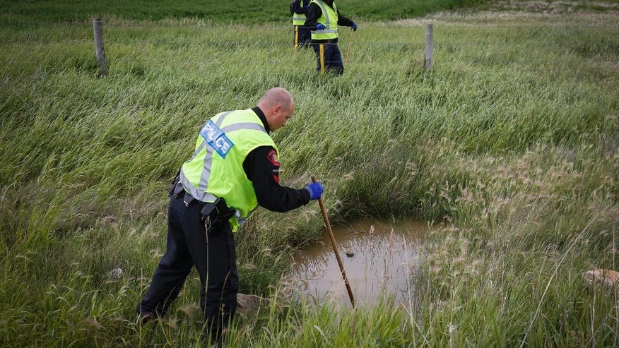 Police search a field in a rural area in the disappearance of Taliyah Marsman, near Chestermere, Alberta, Canada, Thursday, July 14, 2016. Police say they have found a body believed to be that of Taliyah Leigh Marsman, reported missing earlier this week after her mother was found dead. Edward Delten Downey has been charged with murder in both their deaths.   (Jeff McIntosh/The Canadian Press via AP)