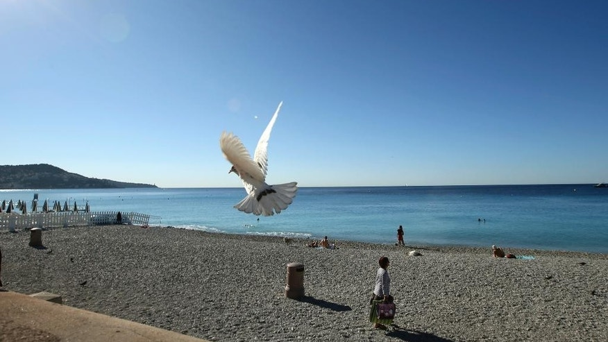 A white pigeon flies over the beach near the scene of a truck attack in Nice, southern France, Saturday, July 16, 2016. Nice's seaside boulevard reopens to traffic Saturday following a dramatic truck attack which killed more than 80 people and wounded more than 200 others at a fireworks display. (AP Photo/Luca Bruno)