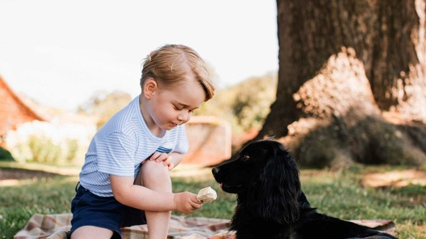 Britain's Prince George with the family dog, Lupo.