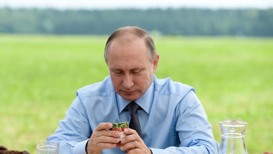 Russian President Vladimir Putin eats lunch with farm workers at a field in Dmitrova Gora, Tver region, Russia, Thursday, July 28, 2016. (Alexei Nikolsky/Sputnik, Kremlin Pool Photo via AP)
