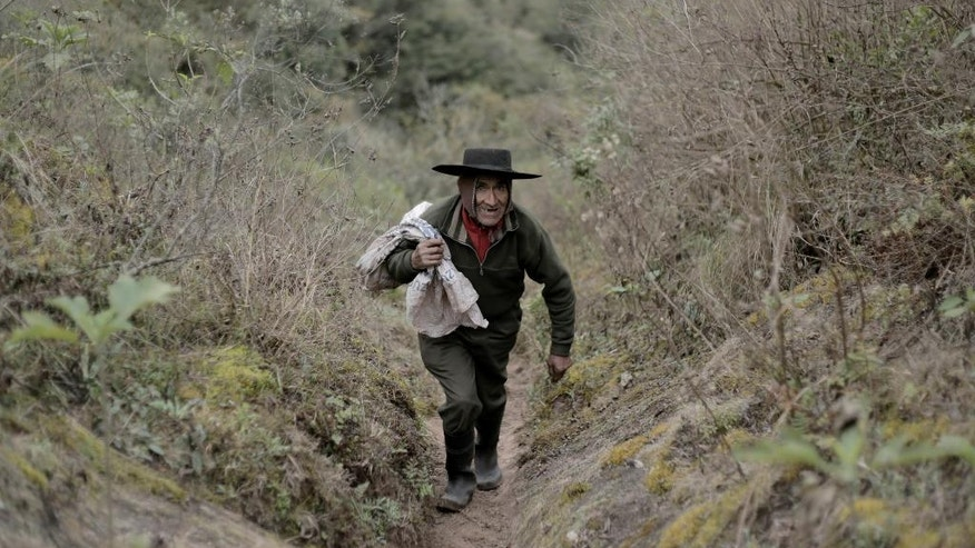 In this July 28, 2016 photo, Pedro Luca walks down the mountain to San Pedro de Colalao, in Argentina's northern province of Tucuman. Luca has lived in a cave in northern Argentina for 40 years. When he gets hungry he picks up his rifle and goes hunting or he goes on a three-hour trek down the mountain to the nearest settlement of San Pedro de Colalao. (AP Photo/Alvaro Medina)