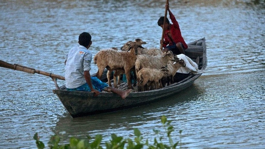 FILE- In this July 31, 2016, file photo, flood affected villagers transport their sheep on a boat in Morigaon district, east of Gauhati, northeastern Assam state, India. Incessant downpours have damaged swaths of land, uprooted trees and snapped telephone cables in dozens of districts in the states of Bihar in the east, Assam in the remote northeast and Himachal Pradesh in the north. (AP Photo/Anupam Nath, File)
