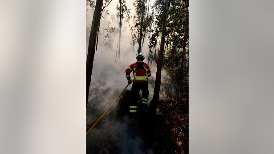 A firefighter works to stop a fire in Quintela, near Arouca, in the region of Aveiro, northern Portugal, Tuesday Aug. 9 2016. The National Civil Protection Service said some 2,900 firefighters were in action Tuesday fighting dozens of fires. The worst-hit areas were in northern Portugal, where temperatures have exceeded 30 degrees Celsius (86 Fahrenheit) since Saturday. (AP Photo/Sergio Azenha)