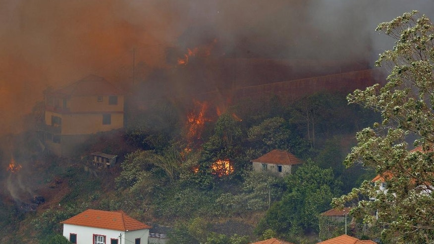 A forest fire rages near houses in Curral dos Romeiros, on the outskirts of Funchal, the capital of the Madeira island, Portugal Tuesday, Aug. 9 2016. Flames from forest fires licked at homes around Funchal, casting a smoke plume over the downtown and forcing the evacuation of more than 400 people. (AP Photo/Helder Santos)