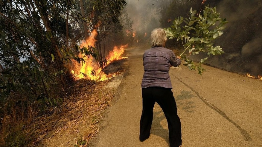 FILE - In this Thursday, Aug. 11 2016 file photo, a woman uses a tree branch to fight a fire on the road leading to the village of Parada, near Mortagua, northern Portugal. Authorities say a series of wildfires this month in Portugal has burned more than half of the land lost to blazes in the entire 28-nation European Union so far this year. The EU's Forest Fire Information System, which collates wildfire data, says wildfires have charred more than 217,000 hectares (536,200 acres) in the bloc in 2016. Almost 116,000 hectares (286,600 acres) of the charred forest land is in Portugal, the agency told The Associated Press. (AP Photo/Sergio Azenha, file)
