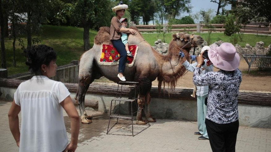 A North Korean and her son pose for a photo on the back of a camel at the newly opened Central Zoo in Pyongyang, North Korea, Tuesday, Aug. 23, 2016. North Korean leader Kim Jong Un's latest gift to the lucky residents of Pyongyang, the renovated central zoo, is pulling in thousands of visitors a day with a slew of attractions ranging from such typical zoo fare as elephants, giraffes, penguins and monkeys to a high-tech natural history museum. (AP Photo/Dita Alangkara)