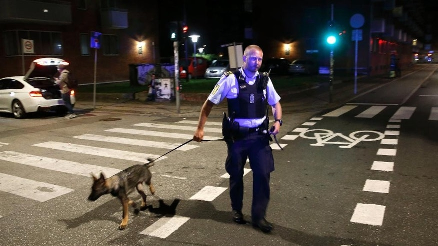 A Danish police officer and a police dog are on patrol near Christiania in Copenhagen late night Wednesday, Aug. 31, 2016.  Police say they have shot and critically wounded an armed Danish man following an earlier Copenhagen shootout that left two officers and a bystander wounded. (Jens Dresling/POLFOTO via AP)  DENMARK OUT