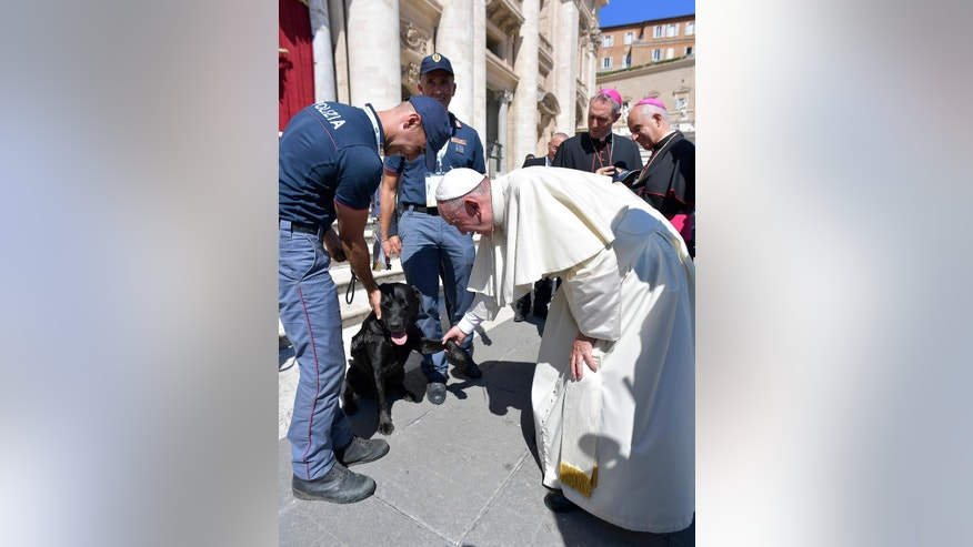 Pope Francis takes the paw of Leo, the Labrador which pinpointed a four-year-child who had survived in a pile of quake rubble, in St. Peter's Square at the Vatican Saturday, Sept. 3, 2016. Pope Francis on Saturday denounced what he called the modern-day sin of being indifferent to hunger, exploitation and other suffering, as he held up Mother Teresa as a model to follow, on the eve of a sainthood ceremony for the nun who cared for India's destitute. (L'Osservatore Romano/Pool Photo via AP)