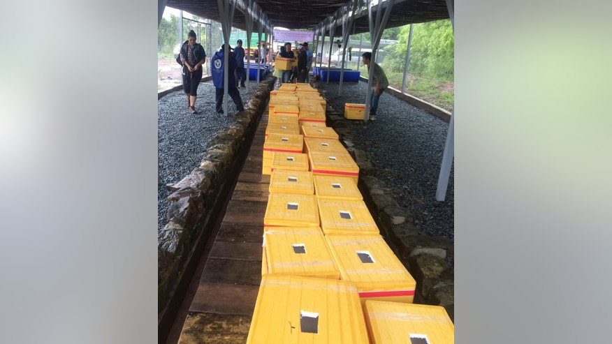 In this photo released by the Wildlife Conservation Society, boxes containing Royal Turtles are prepared for release at a conservation center in Mondul Seima, Koh Kong province, Cambodia, Tuesday, Sept. 13, 2016.T he New York-based Wildlife Conservation Society have transferred 206 of the nearly extinct Royal Turtles to a new purpose-built breeding and conservation center, easing fears the rare species will disappear in Cambodia. (Mengey Eng/Wildlife Conservation Society via AP)