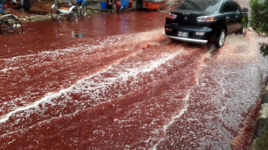 In this Tuesday, Sept. 13, 2016 photo, a car drives past a road turned red after blood from sacrificial animals on Eid al-Adha mixed with water from heavy rainfall in Dhaka, Bangladesh. Authorities in Dhaka had assigned several places in the city where residents could slaughter animals, but the heavy downpours Tuesday meant few people could use the designated areas. (AP Photo)
