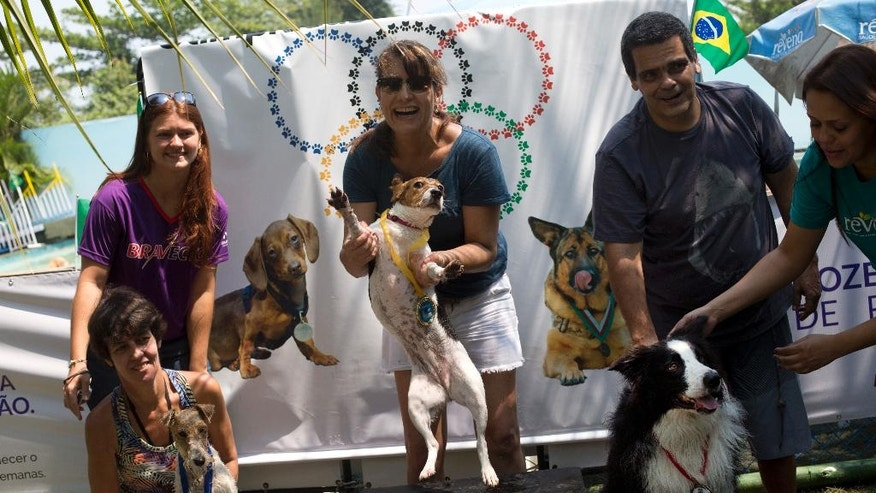 """""""Mima,"""" center, jumps after winning the gold medal in the jumping competition during the Dog Olympic Games in Rio de Janeiro, Brazil, Sunday, Sept. 18, 2016. Owner of the dog park and organizer of the animal event Marco Antonio Toto says his goal is to socialize humans and their pets while celebrating sports. (AP Photo/Silvia Izquierdo)"""