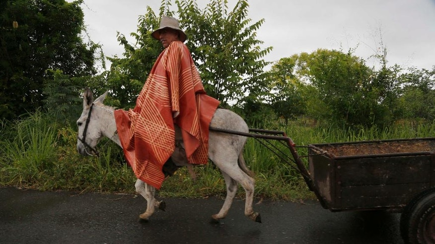 "This Sept. 21, 2016 photo shows a farmer on his donkey, pulling a cart through the town of Paso Blanco, Veracruz state, Mexico, the hometown of slain Rev. Jose Alfredo Suarez de la Cruz, who was found bound and shot to death alongside another priest. The priests' murders hit hard because of their positions in the community, a woman said, but everyone fears they could be next: ""Really, we're all exposed to having something happen to us.""  (AP Photo/Marco Ugarte)"