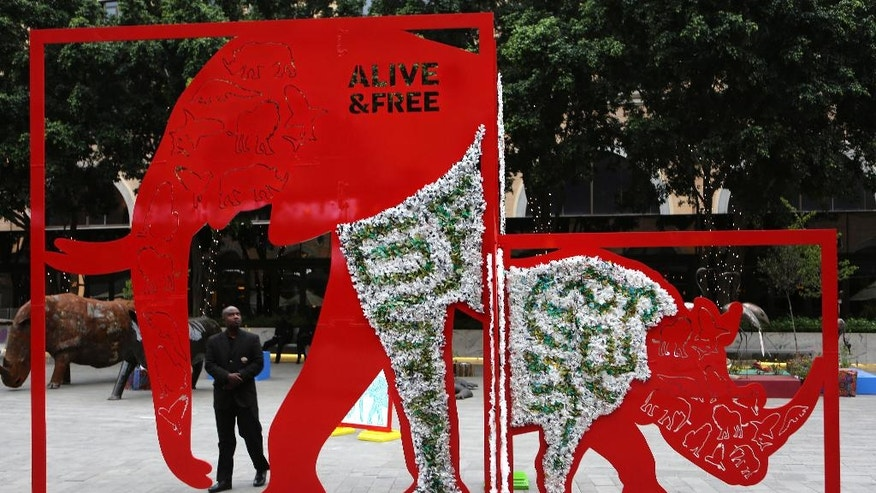 """A sculpture commissioned by International Fund for Animal Welfare (IFAW) titled """"Alive and Free"""" by sculptor Daniel Jansen van Vuuren, depicting a life-size elephant and rhino, after being installed overnight in the precinct where the Convention on International Trade in Endangered Species of Wild Fauna and Flora, (CITES) is being held in Sandton, Johannesburg, Monday, Sept 26, 2016. The work depicts two of Africa's most iconic species under threat among others including pangolins, African lions, Barbary macaque monkeys, sharks and African grey parrots. (AP Photo/Denis Farrell)"""