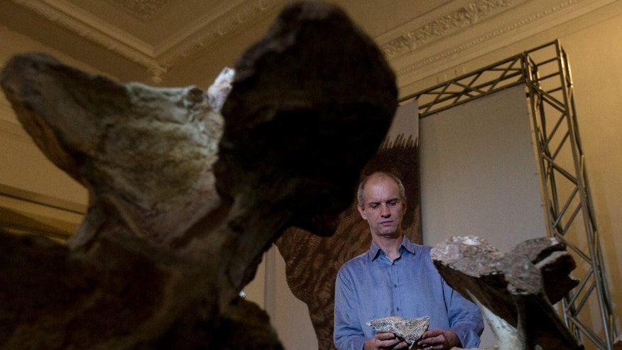 "Paleontologist Alexander Kellner holds bones of the ""Austroposeidon magnificus"" dinosaur at the Earth Sciences Museum, in Rio de Janeiro, Brazil, Thursday, Oct. 6, 2016. Brazilian scientists say they have discovered the ""Austroposeidon magnificus,"" the largest dinosaur ever found in South America's biggest country. (AP Photo/Silvia Izquierdo)"