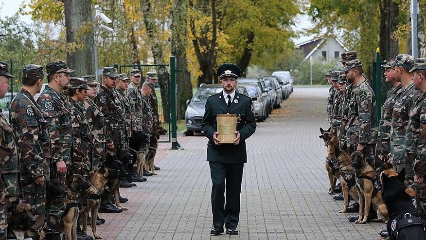 The urn with the ashes of Lithuanian police dog Ramzis is carried before officers and dogs from the State Border Guard Service's canine squad during a ceremony in the western town of Pagegiai, Lithuania, Wednesday, Oct. 12, 2016. The three-year old male dog was killed in action on Sept. 27 when state border officers were tracking smugglers near Russian Kaliningrad exclave border. (Rokas Pukinskas/ State Border Guard Service via AP)