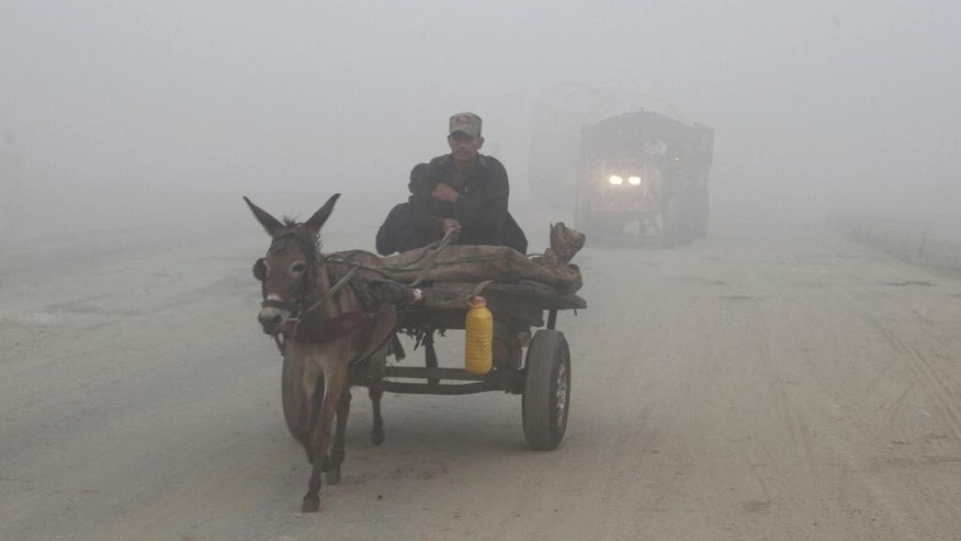 A Pakistan rides his donkey-cart though a road while dense smog engulf the neighborhood of Lahore, Pakistan, Saturday, Nov. 5, 2016. Thick smog has engulfed several cities in central Pakistan for few days, causing, breathing problems, road accidents and disruption of flight and train scheduled as well as the closure of the sections of the main motorways. (AP Photo/K.M. Chaudary)