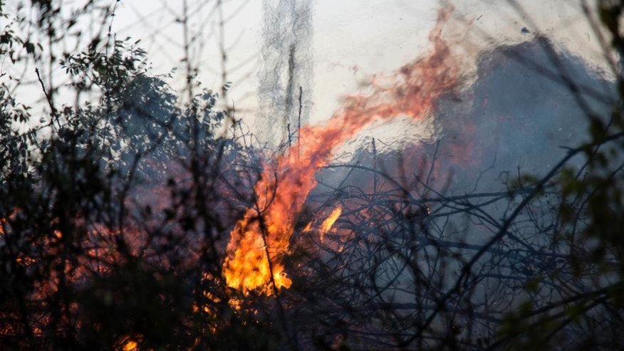 A wildfire burns in Zikhron Ya'akov, Israel, Wednesday, Nov. 23, 2016. Due to dry conditions, wildfires broke out for the second day in Israel. In Zikhron Ya'akov around ten homes were burned and about fifteen people sustained light injuries from smoke inhalation. (AP Photo/Ariel Schalit)