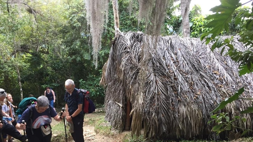 This Nov. 27, 2016 photo shows hikers on a group tour around a thatched hut near La Plata, Cuba. The tour takes visitors into the Sierra Maestra mountains where Fidel Castro launched his guerrilla war from a jungle command center 60 years ago. Word of Castro's death reached the hikers on a crackling two-way radio, their sole link to the outside world. (AP Photo/Karin Laub)